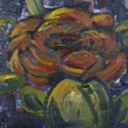Ecuador Rose Poster