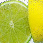 Effervescent Lime And Lemon By Kaye Menner Poster