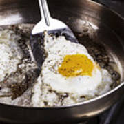 Eggs Cooked With Bacon Grease In Pan  Poster