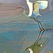 Egret Getting Ready For Take Off Poster