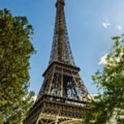 Eiffel Tower Through Trees Poster