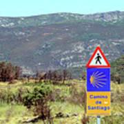 El Camino De Santiago De Compostela, Spain, Sign Poster