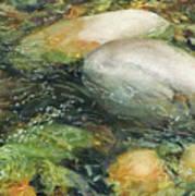 Elbow River Rocks 2 Poster