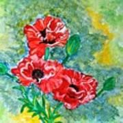 Elegant Poppies Poster