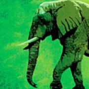 Elephant Animal Decorative Green Wall Poster 4 Poster