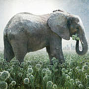 Elephant Eating Onions Poster