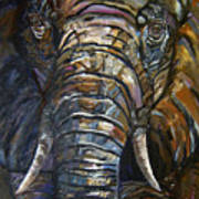 Elephant Faces Of Nature Series Poster