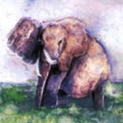 Elephant Poised Poster