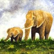 Elephants - Mother And Baby Poster