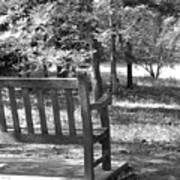 Empty Park Bench Poster