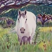 En El Bosque Poster