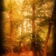 Enchanted Path 2 - Allaire State Park Poster