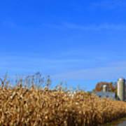 End Of Season Corn 2015 Poster