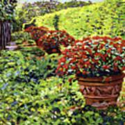 English Flower Pots Poster
