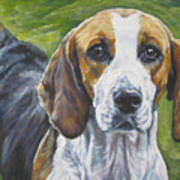 English Foxhound Poster