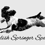 English Springer Spaniel Poster