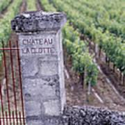 Entrance Of A Vineyard, Chateau La Poster