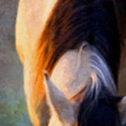 Equine Glow Poster