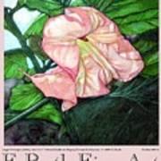 E.ruth Fine Art Poster 1 Poster