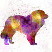 Estrela Mountain Dog In Watercolor Poster