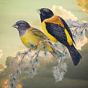Ethereal Birds On Snowy Branch Poster