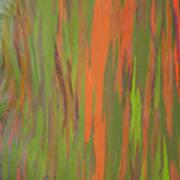 Eucalyptus Abstract Poster