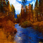 Evening Hatch On The Metolius Painting Poster