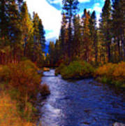 Evening Hatch On The Metolius River Photograph Poster by Diane E Berry