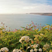 Evening Light In Cornwall Poster