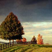 Evening Pasture Poster