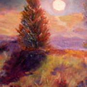 Evening Splendor Poster