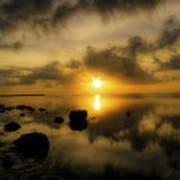 Everglades Sunrise Poster