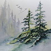 Evergreens In The Mist Poster