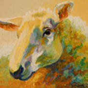 Ewe Portrait IIi Poster by Marion Rose