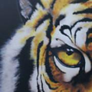 Eye Of Tiger Poster