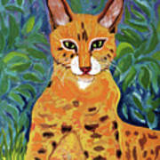 fabulous cat portrait in the style of Van Gogh's Poster