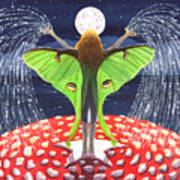 Fairy Dust Poster
