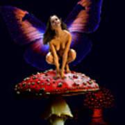 Fairy On Mushroom Poster