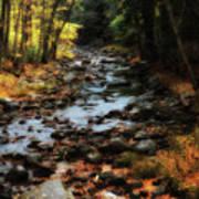 Fall Along Tenant Creek Poster