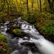 Fall At Bridal Veil Creek Poster