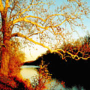 Fall At The Raritan River In New Jersey Poster