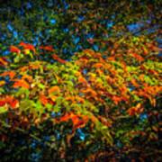 Fall Begins Poster