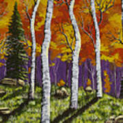 Fall Birch Trees Painting Poster