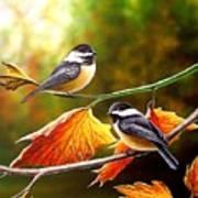 Fall Chickadees Poster