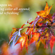 Fall Color - Haiku Poster