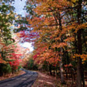 Fall Colors Backroad Poster