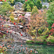 Fall Colors In Depth Poster