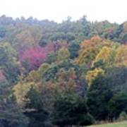 Fall Colors In Rockbridge County Poster