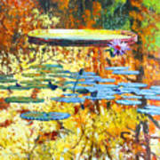 Fall Colors On The Lily Pond Poster