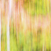 Fall Colours Abstract, Oxtongue River, Algonquin Highlands Poster